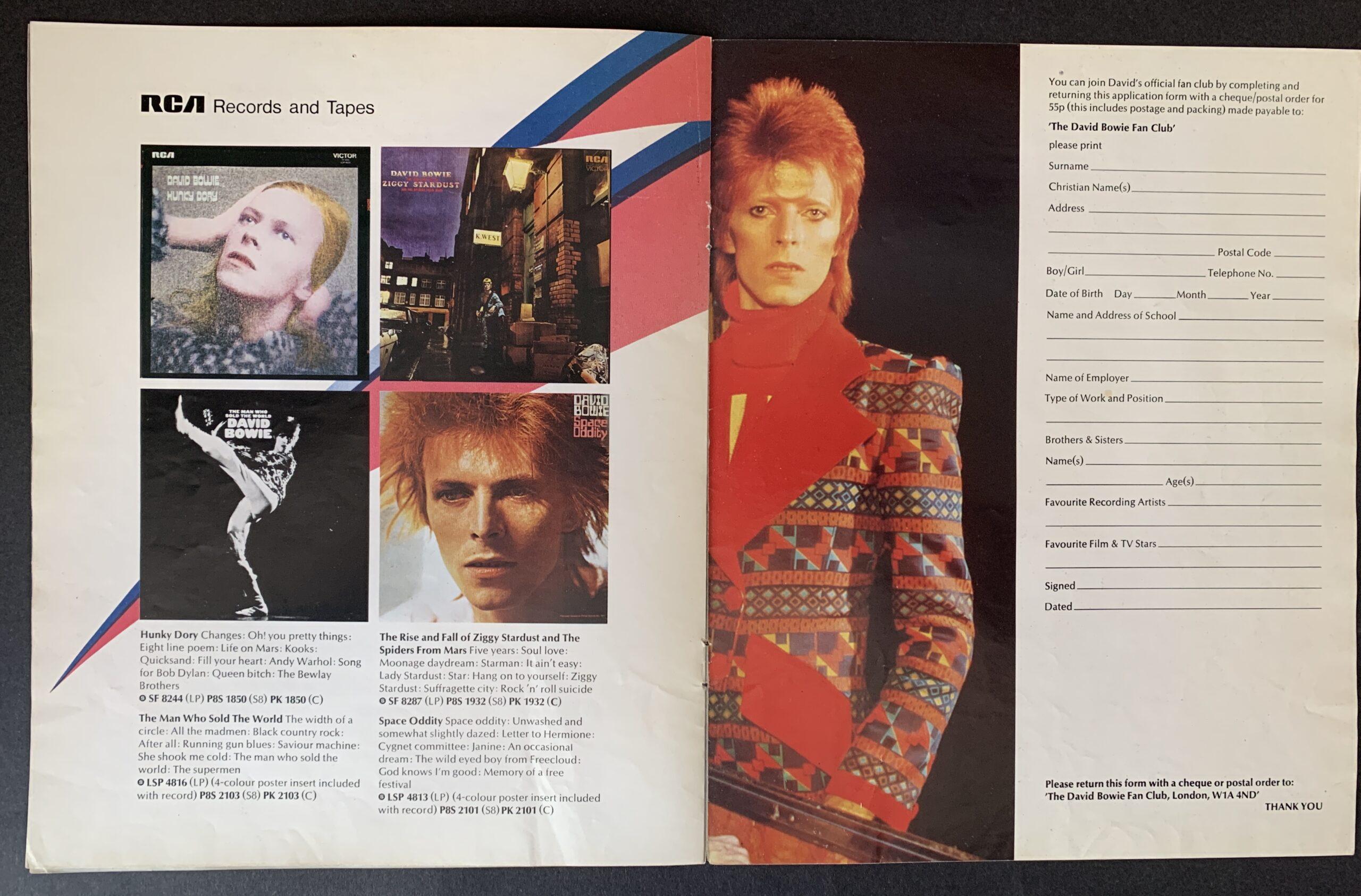 David Bowie Aladdin Sane Hammersmith Odeon 1973 Concert Ticket Stub Fine Art Print Ziggy Stardust